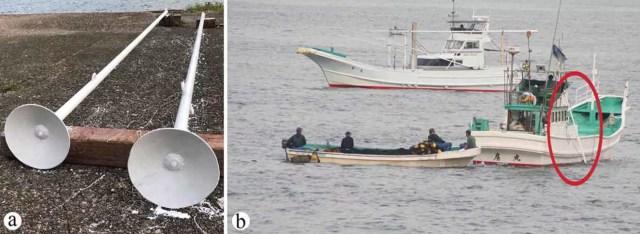 Na figura (a), trompetes de metal utilizados na caça aos golfinhos. E, na (b), Trombetas (indicadas por círculo) são montadas e colocadas na água (Foto: Courtney Vail/ Reprodução)