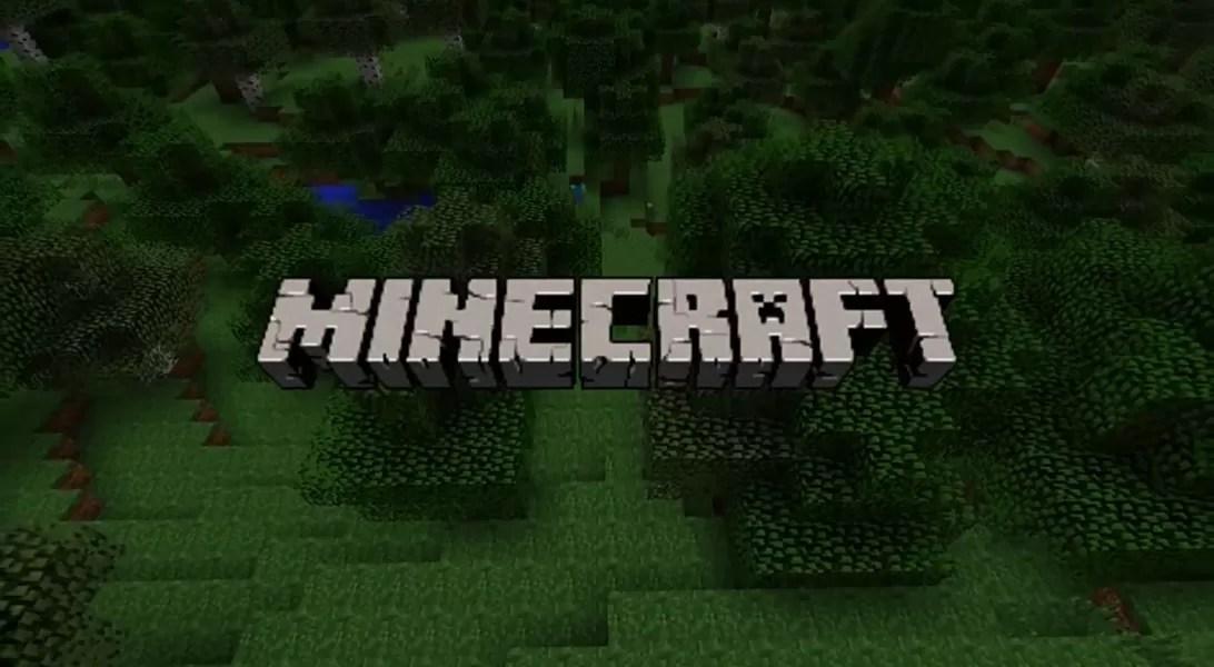 Pc Minecraft Silly Skins