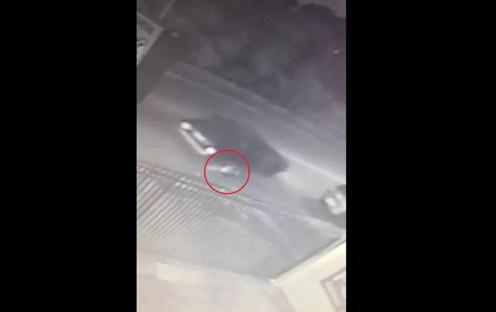 Roubo ocorreu no bairro Fanny, enquanto vítima de 18 anos aguardava motorista de aplicativo com celular em mãos. — Foto: Reprodução