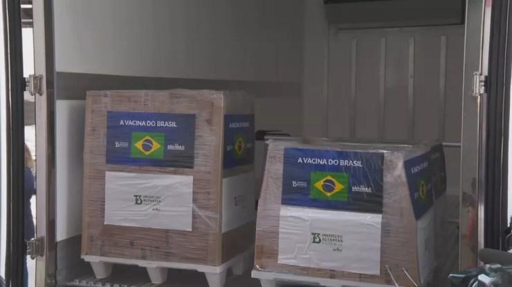 800 mil doses da Coronavac liberadas pelo governo de SP ao Ministério da Saúde nesta quarta-feira (14). — Foto: Reprodução/TV Globo