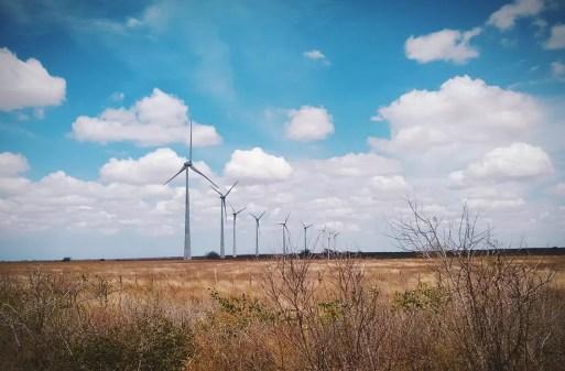 Parque eólico localizado no Rio Grande do Norte. — Foto: Igor Jácome/G1