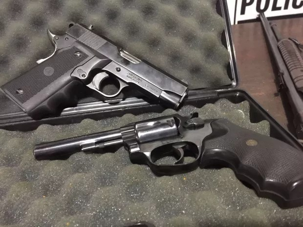 Armas estavam com o registro vencido (Foto: Divulgaçao / Polícia Civil)