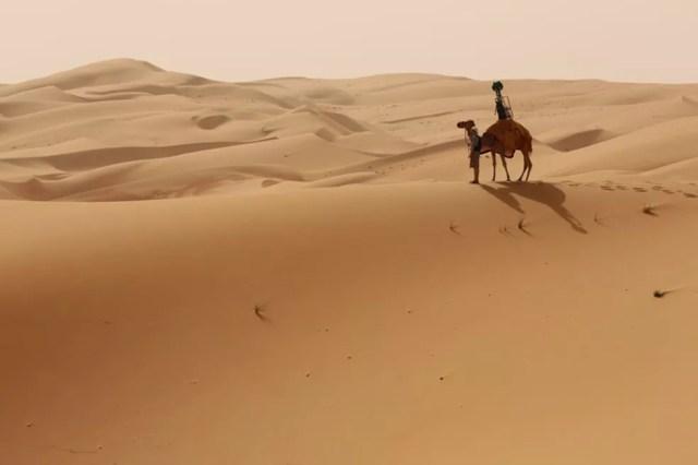 Trekker do Street View foi montado em camelo para fazer imagens do deserto (Foto:  Reprodução/Google)