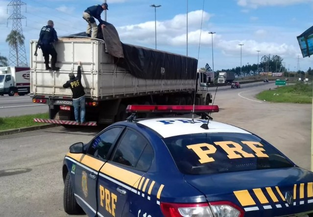 Cigarros contrabandeados do Paraguai foram apreendidos em Paulo Lopes, SC (Foto: Divulgação/PRF-SC)