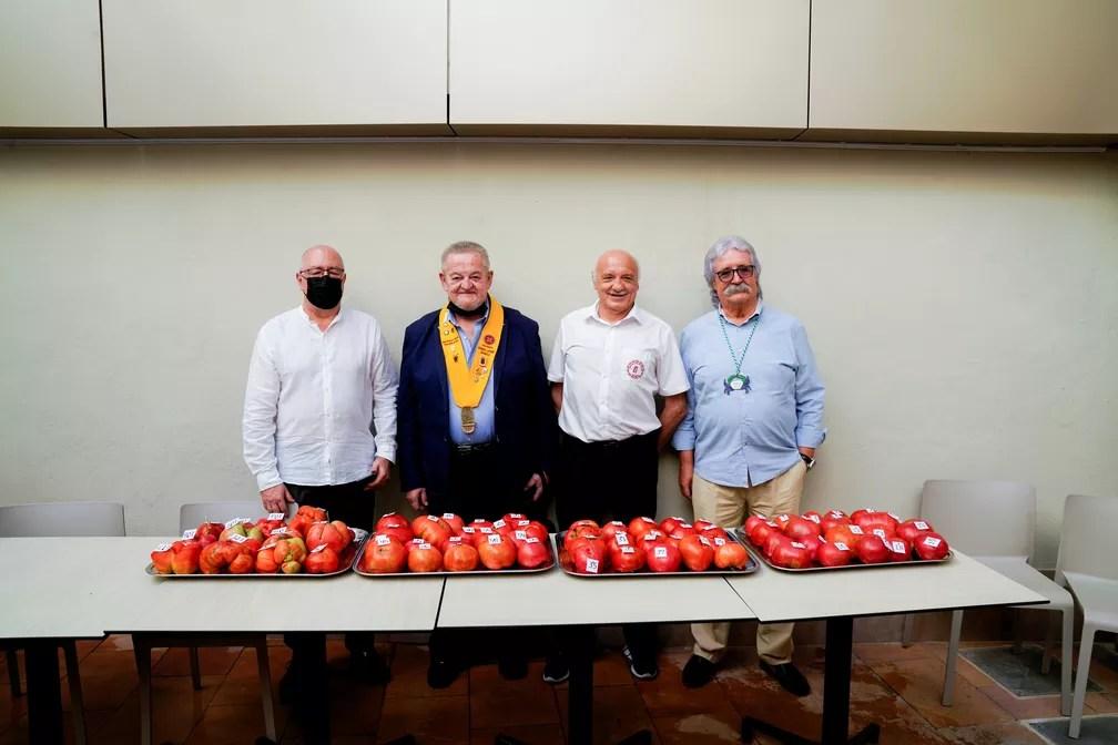 """Membros do júri posam com tomates na 14ª edição do concurso """"tomate mais feio"""" em Tudela, na Espanha. — Foto:  REUTERS/Vincent West"""