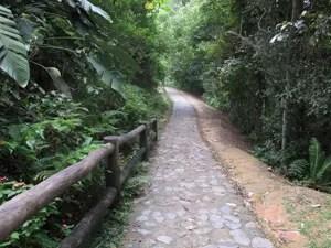 Caminho de pedras é alternativa (Foto: Anna Gabriela Ribeiro/G1)