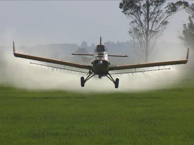 Agrotóxico é despejado pelo avião e atinge mata (Foto: Reprodução/RBS TV)