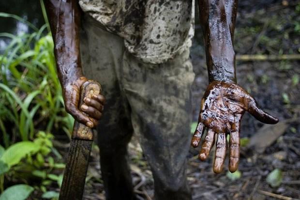 Trabalhador mostra mãos sujas de petróleo em imagem feita no Delta do Rio Niger (Foto: AP/Naturepl.com/Jabruson/WWF)