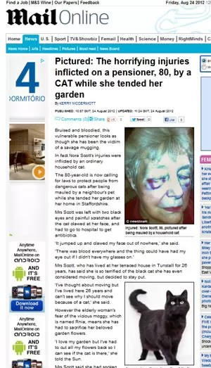 Idosa fica ferida gravemente após ataque de gato no Reino Unido (Foto: Reprodução)