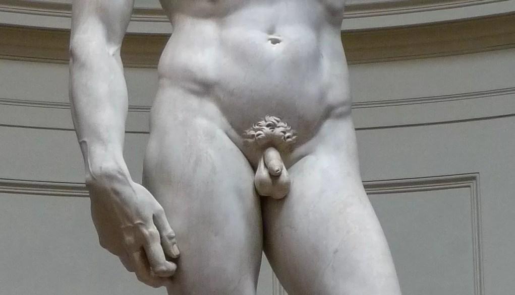 Estátua David, de Michelangelo (Foto: Wikimedia Commons)