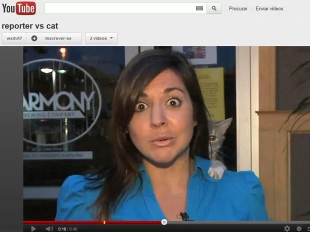 Repórter faça cara de surpresa com interrupção de gato (Foto: Reprodução)