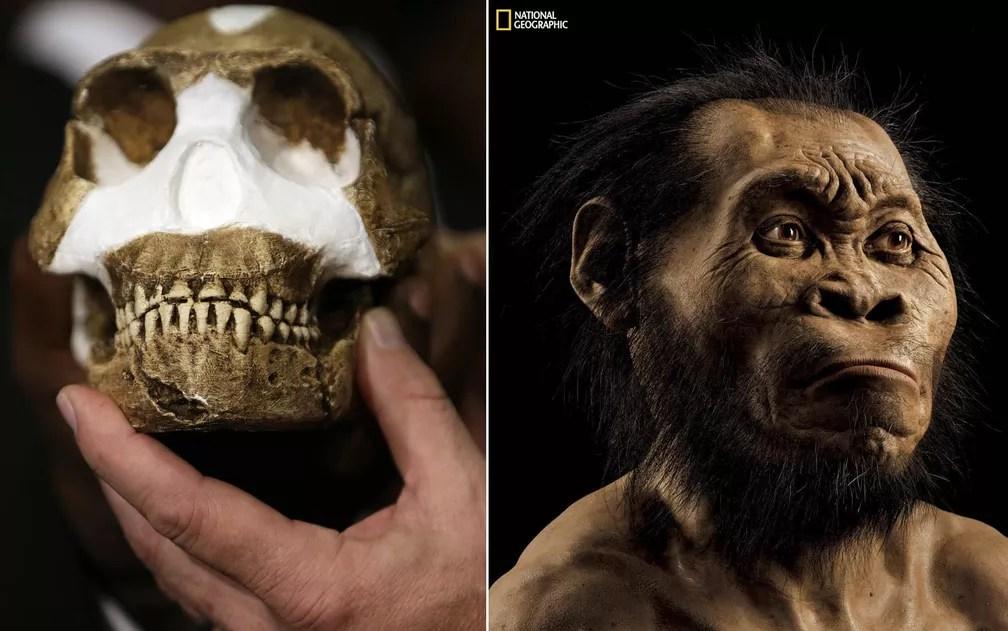 Fóssil e reconstrução de como seria o rosto do 'Homo Naledi' (Foto: Themba Hadebe/AP; Mark Thiessen/National Geographic)