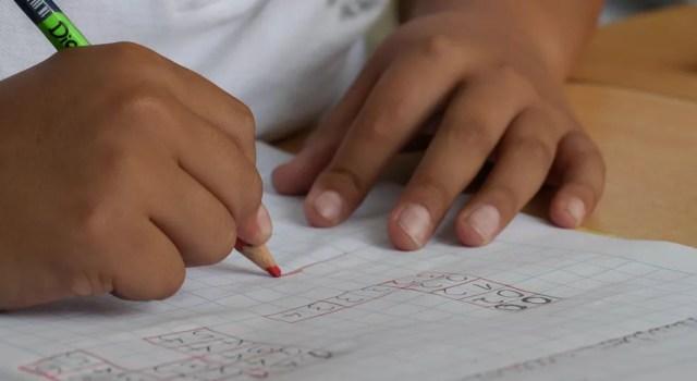 Aluno em sala de aula — Foto: Lourdes ÑiqueGrentz/Pixabay