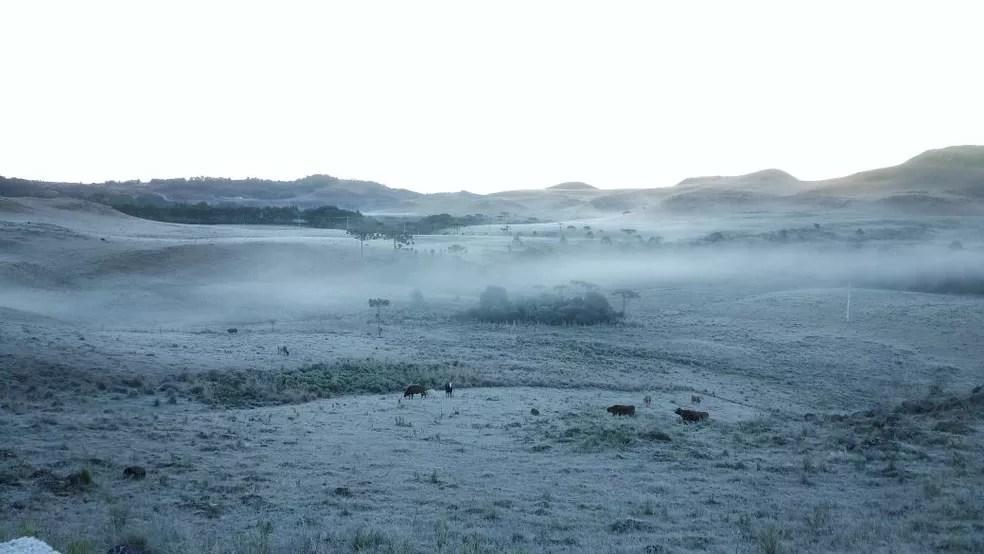 Geada deixou paisagem branca na Serra de SC (Foto: Mycchel Hudsonn Legnaghi/São Joaquim Online)