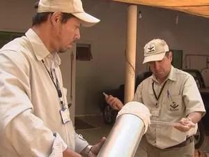 Agentes da Sucen capturam mosquito para ser analisado (Foto: Reprodução/TV TEM)
