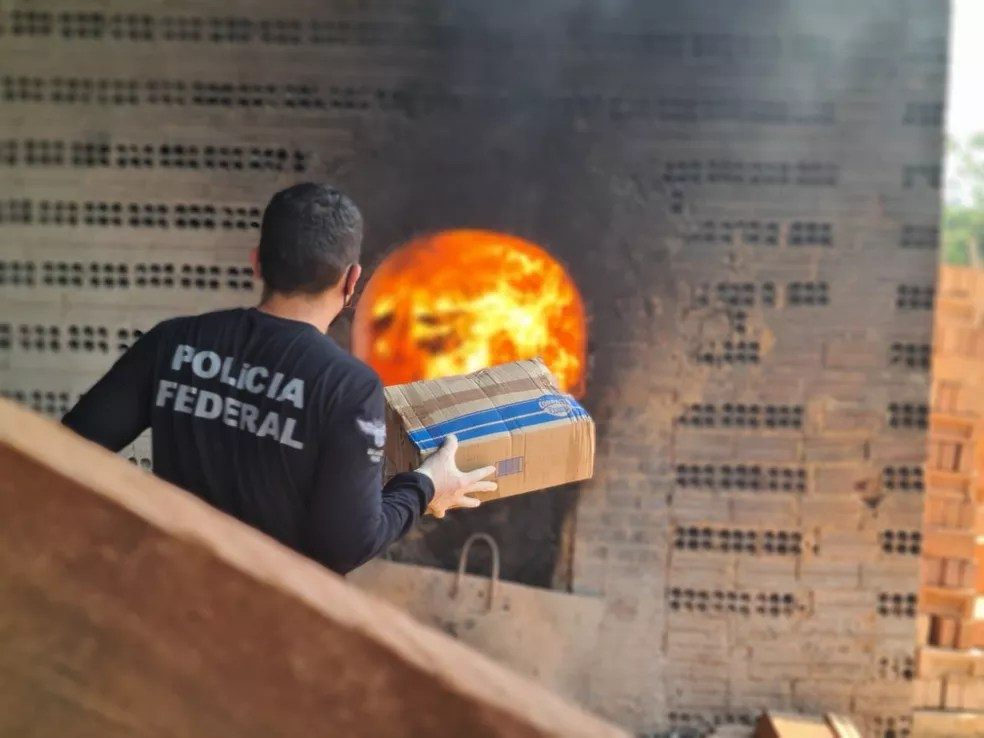 Drogas incineradas em Porto Velho foram apreendidas entre agosto de 2019 e agosto de 2020 — Foto: PF/Divulgação