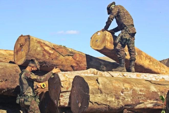 Madeireiras são alvo da Operação Verde Brasil 2 nesta quarta-feira (27). — Foto: Divulgação/Exército Brasileiro