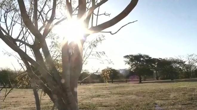 Tempo seco e baixa umidade causam transtornos para moradores  — Foto: Reprodução/TV TEM