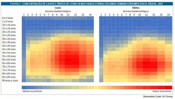 Concentração de casos e óbitos por Covid nas faixas etárias segundo semana epidemiológica — Foto: Fiocruz/Reprodução