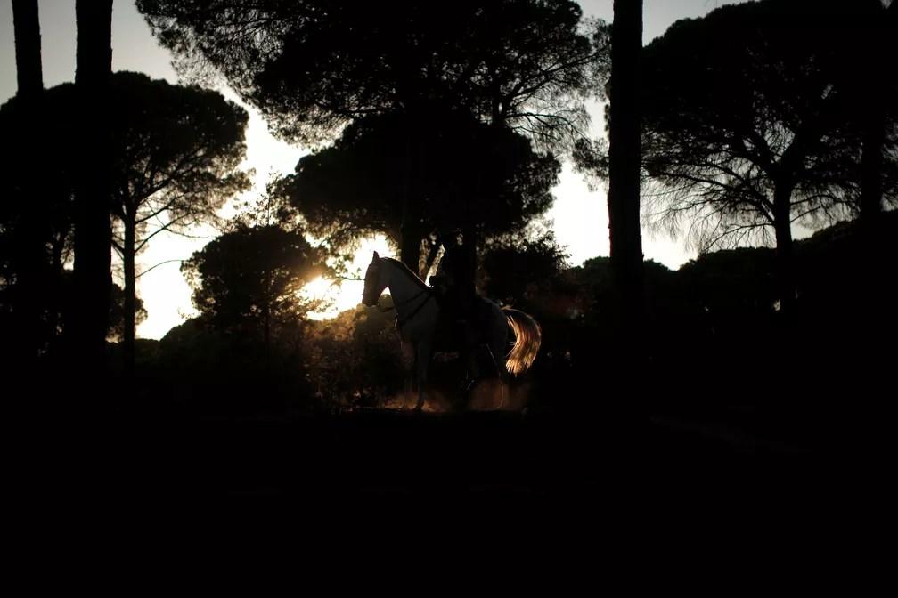 31 de maio - Um peregrino monta seu cavalo enquanto se dirige ao santuário de El Rocio, no Parque Nacional de Doñana, sul da Espanha (Foto: Jon Nazca/Reuters)