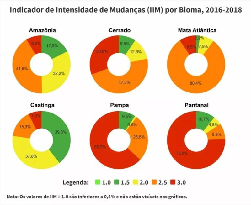 Embora tenha sido o bioma mais preservado entre 2000 e 2018, o Pantanal é o que sofreu alterações mais severas segundo o IBGE — Foto: Reprodução/IBGE