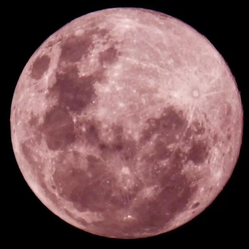 """Fotógrafa percorreu vários endereços para fazer fotos da """"Super Lua Rosa"""" em MS — Foto: Marithê Do Céu/Arquivo Pessoal"""