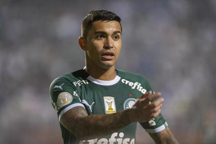 Dudu é referência do Palmeiras há anos — Foto: Agência Estado