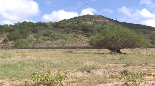 Apesar da seca, a vegetação está verde.  — Foto: Reprodução/TV Grande Rio