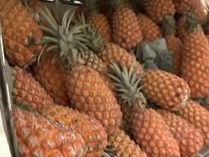 Colheita do abacaxi este ano deve ser recorde em Turiaçu (Foto: Reprodução/TV Mirante)
