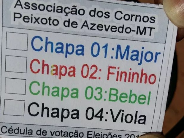 Cédula de votação da eleição realizada no fim de semana (Foto: Associação dos Cornos de Peixoto de Azevedo/ Divulgação)