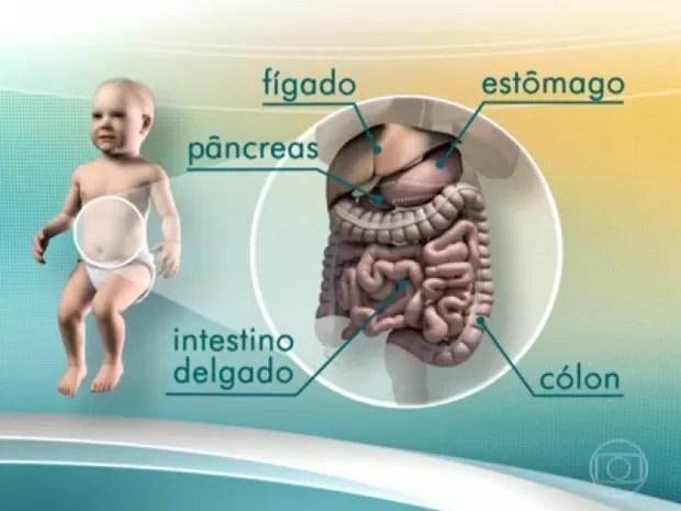 Sofia passou pelo transplante de cinco órgões  (Foto: Reprodução/TV Globo)