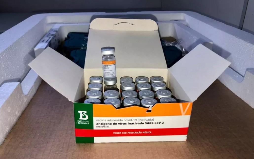 Vacinas que chegaram no estado nesta madrugada foram produzidas pelo Butantan — Foto: Divulgação/Governo do estado