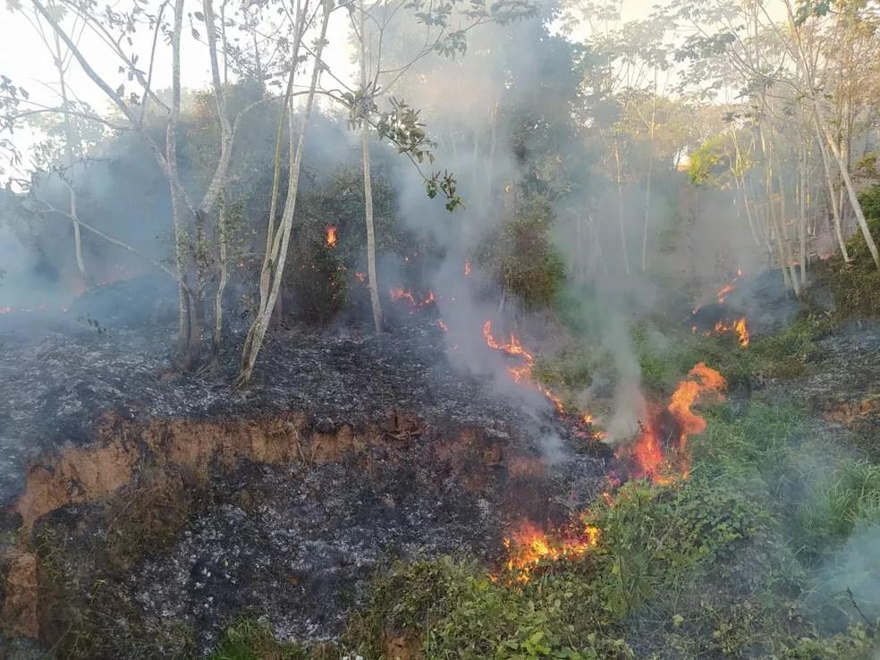 Número de queimadas no Acre em agosto é o segundo maior para o mês em 11 anos — Foto: Arquivo/Corpo de Bombeiros do Acre