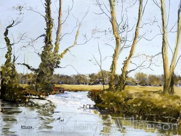 Uma das pinturas de Kieron Williamson, que tem apenas 9 anos de idade (Foto: Divulgação/BBC)