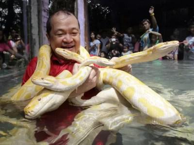 Tangco segura as cobras em uma piscina no zoológico (Foto: Erik De Castro/Reuters)