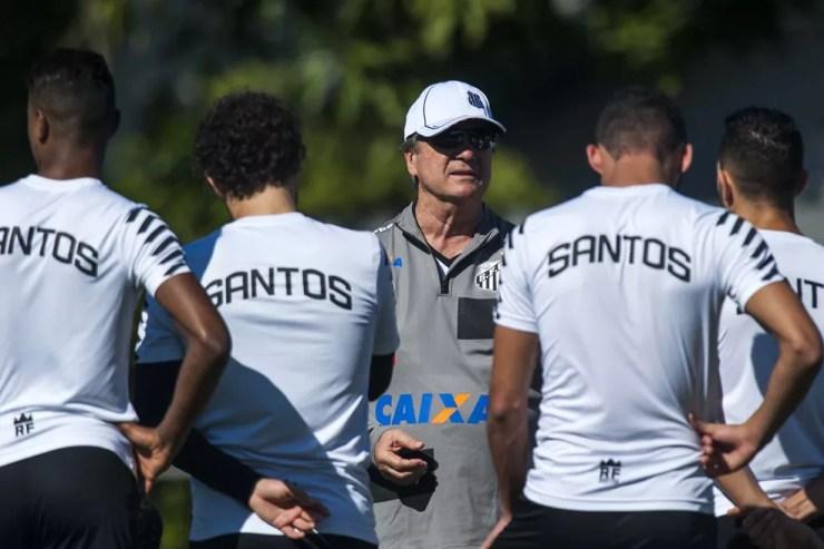 Santos tem dois jogos seguidos em casa para embalar (Foto: Ivan Storti/ Santos FC)