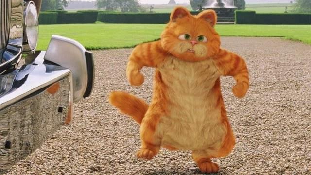 Globo exibe o filme Garfield 2 na Sessão da Tarde
