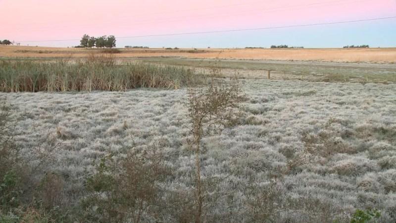 Amanhecer marcado pela geada na zona rural de Uruguaiana (Foto: Reprodução/RBS TV)