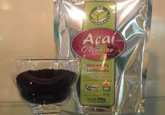 Açaí orgânico liofilizado  (Foto: Bio EcoBrazil/ Divulgação)
