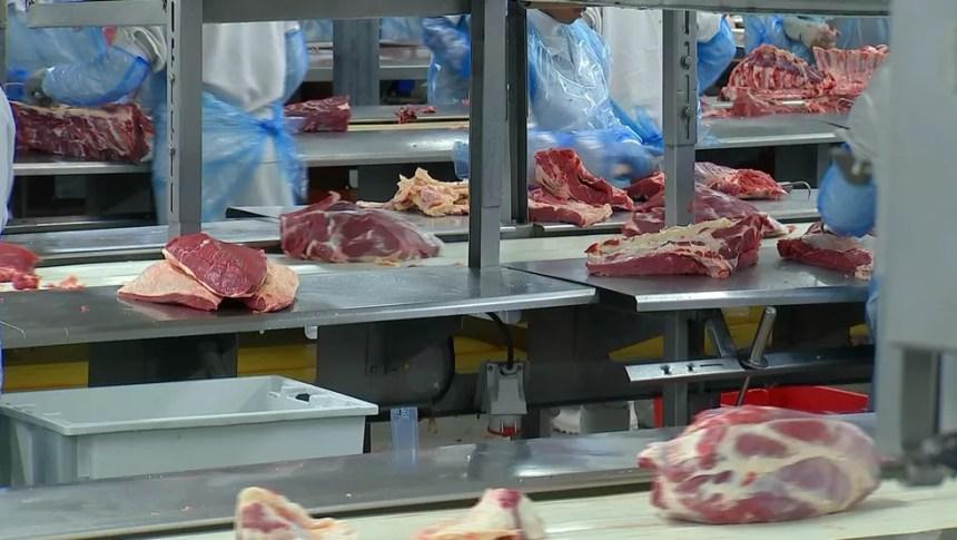 Frigoríficos vivem bom momento na exportação de carne bovina — Foto: Reprodução/TV TEM