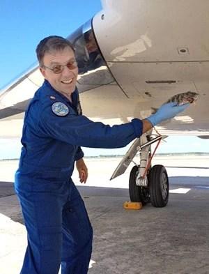 Piloto de um caça americano precisou abortar a decolagem depois que um peixe caiu do céu e atingiu a aeronave  (Foto: MacDill Air Force Base/AP)
