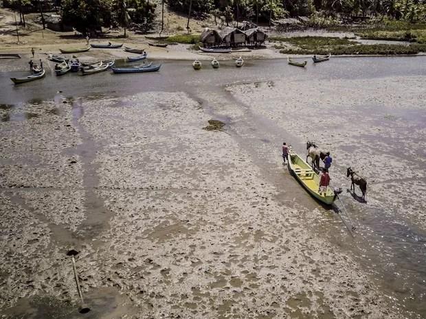 Banco de areia se formou no povoado Potengy, em Piaçabuçu (Foto: Jonathan Lins/G1)