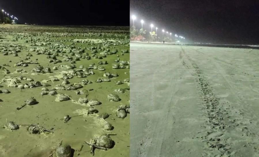 Bolas desapareceram das praias de Peruíbe, SP, após cerca de 24h — Foto: Diogo Cavalcanti de Souza/Arquivo Pessoal