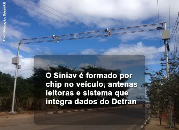 Siniav (Foto: Bruno Perez/Detran RR)