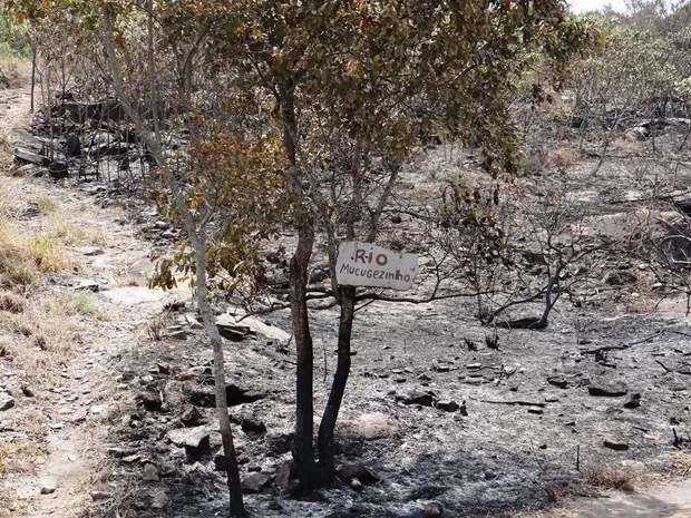 Trilha do Rio Mucugêzinho ficou destruída. (Foto: Portal Chapada)