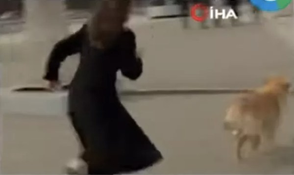 Russian journalist Nadezhda Serezhkina chasing the dog who stole her microphone (Photo: Reproduction)