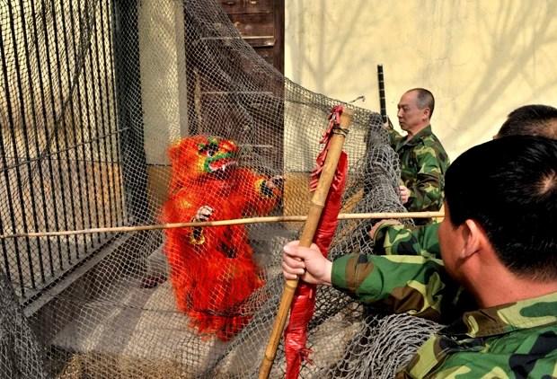 Funcionários jogam rede em 'monstro' durante treinamento em zoológico em Taiyuan, na China (Foto: China Daily/Reuters)