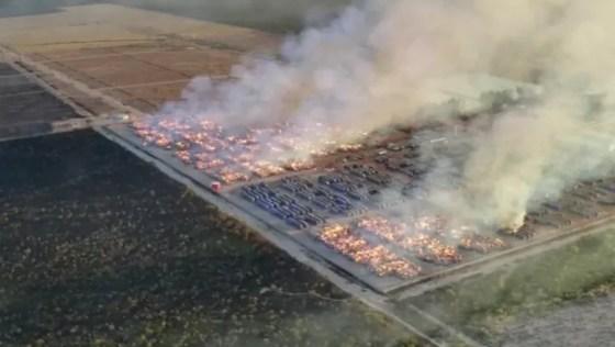 Incêndio em fábrica de algodão na Bahia (Foto: Reprodução)