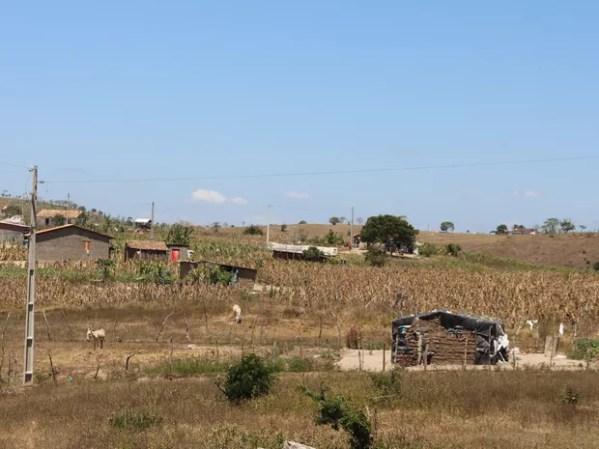 Famílias descendentes de escravos tiveram área reconhecida como comunidade quilombola em 2008 (Foto: Marcio Chagas/G1)