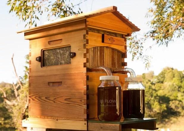 A colmeia inteligente não precisa de roupas de proteção para colher o mel (Foto: Divulgação/Flow Hive)